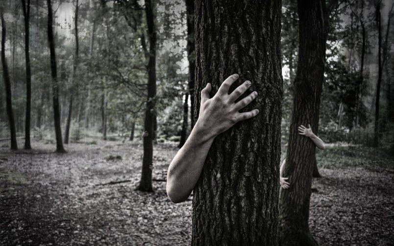 Cómo identificar las pesadillas y los terrores nocturnos